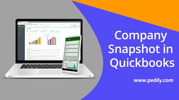 Company Snapshot in Quickbooks